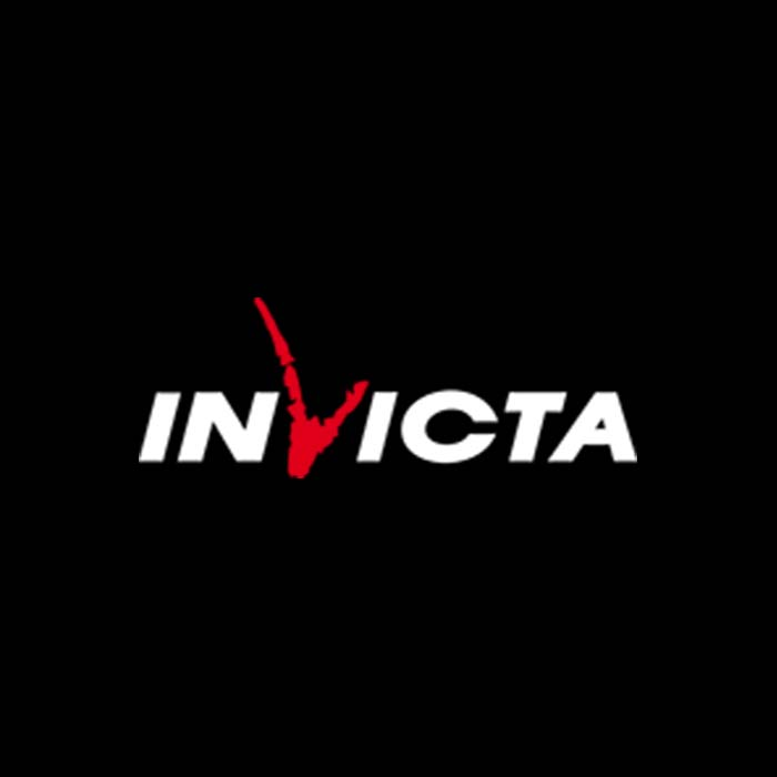 Invicta stoves wood burning and multi-fuel UK
