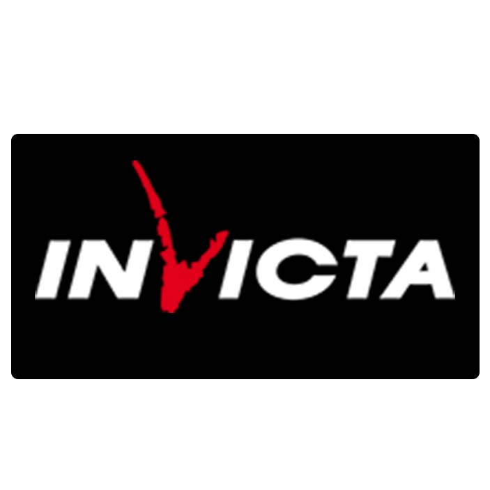 invicta stoves for sale uk
